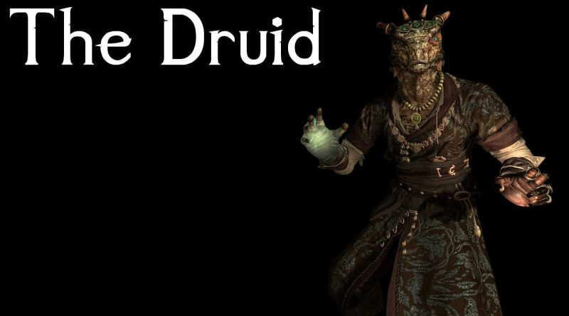 Skyrim Character Build: The Druid – Triumvirate Series