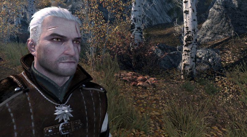 Skyrim Character Build: Gerald of Riften – A Witcher's Adventure