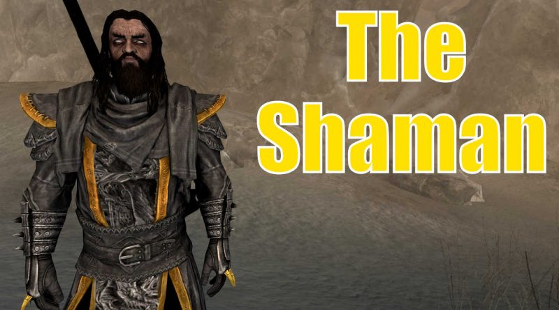 Skyrim Character Build: The Shaman – Triumvirate Series
